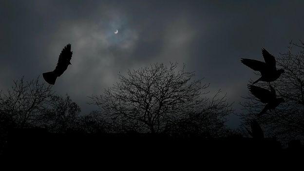 eclipse Bruxelles ERIC_LALMAND - BELGA