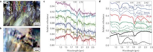 Analyse spectrale des lignes de pente récurrentes du cratère de Palikir. Les minima des spectres soulignent bien qu'on ait affaire avec de l'eau salée. Source : Ojha et al. (2015)